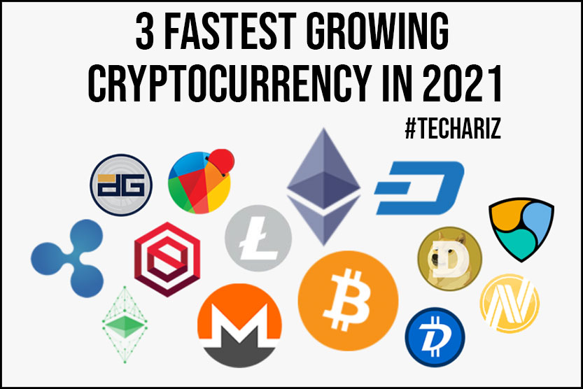 3 Fastest Growing Cryptocurrency in 2021